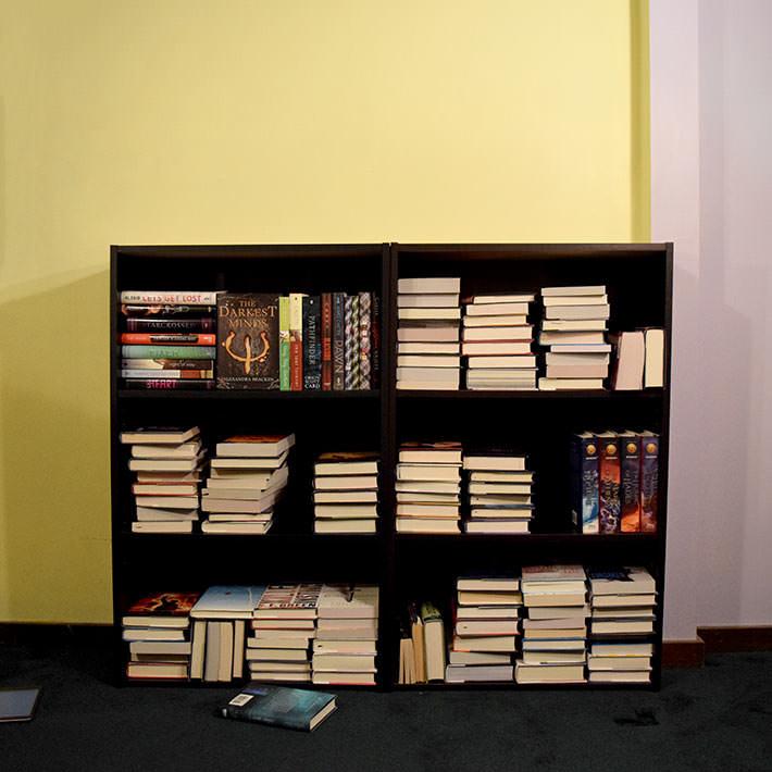 organize shelves 2
